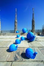 Installation with snails by the Cracking Art Group.